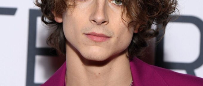 timothee chalamet hairstyle