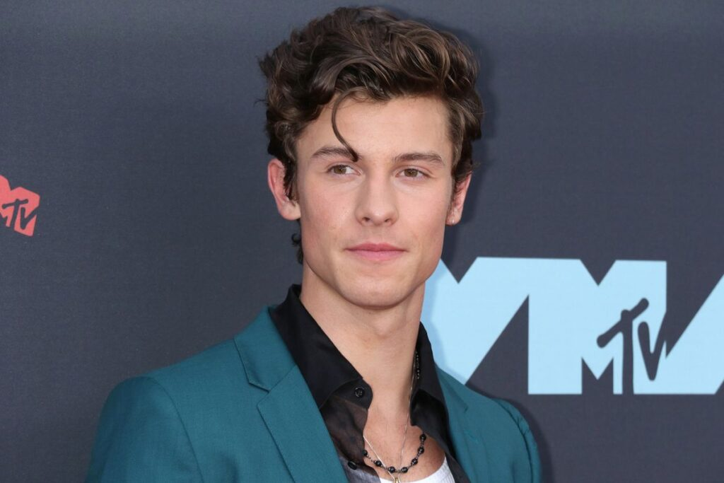 Shawn Mendes Hairstyle